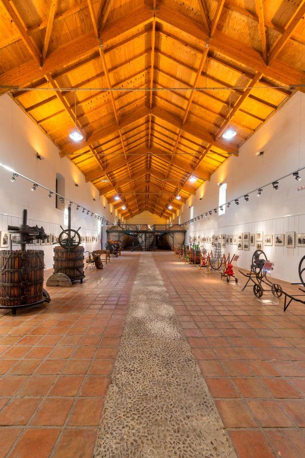 Museo del Vino (Valdepeñas)