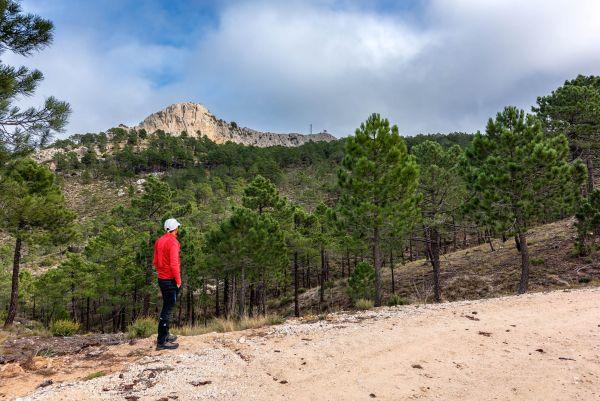 Bogarra | Pico del Padrastro