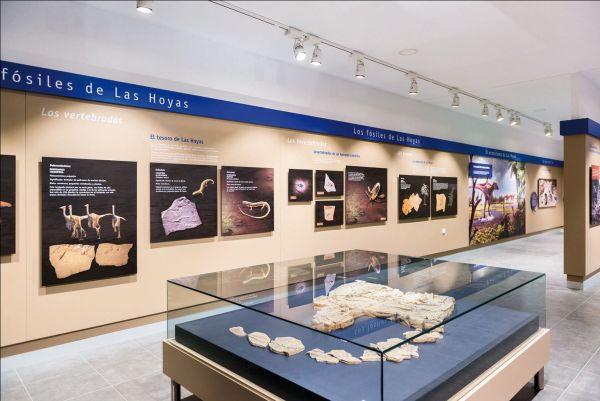 Museo Paleontológico de Cuenca