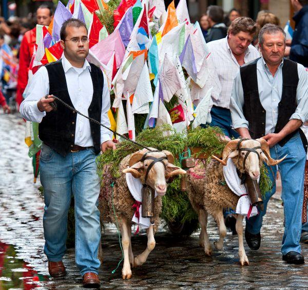 Fiesta de las Mondas (Talavera de la Reina)