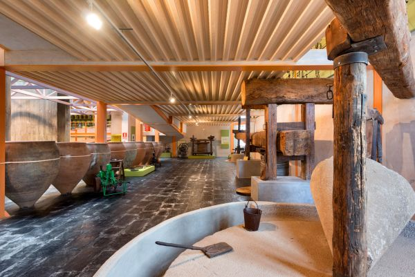 Mora | Museo del Aceite