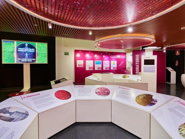 Museo Torre del Vino
