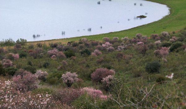 Michos Volcanic Lake