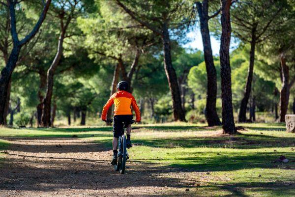Madridejos | Senda del Lince